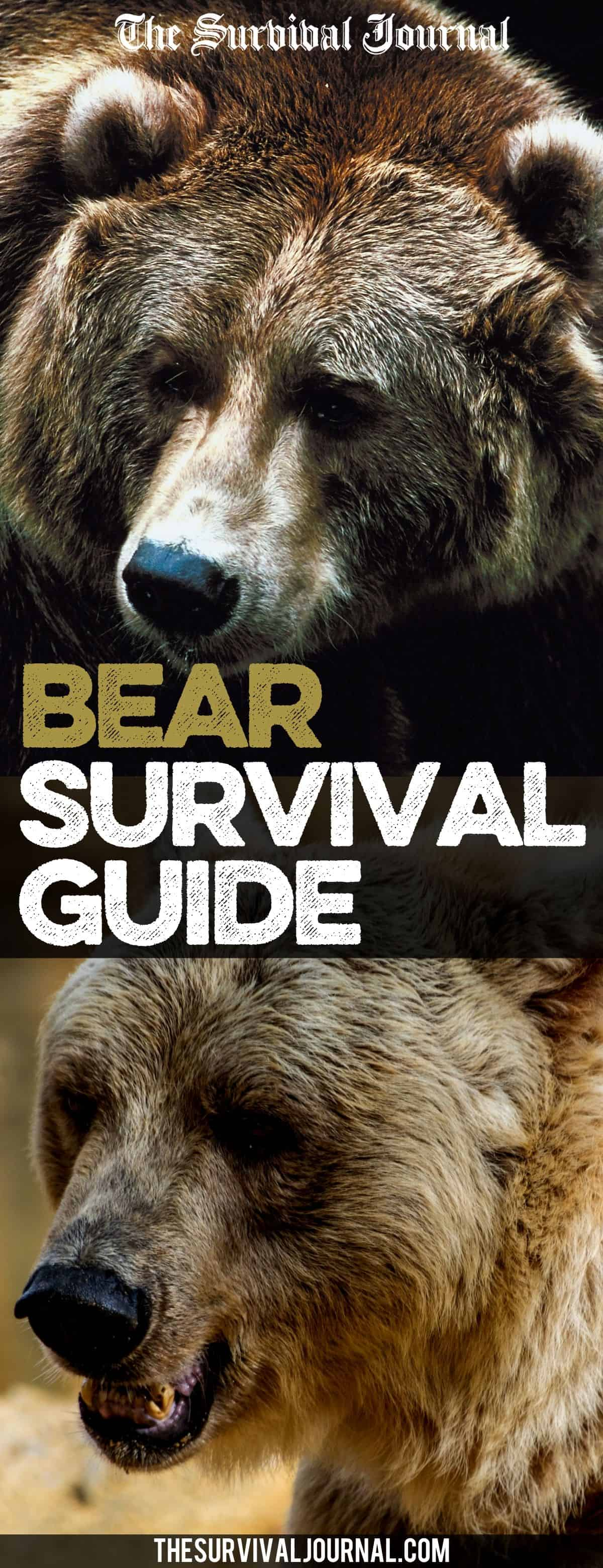 survive a bear attack