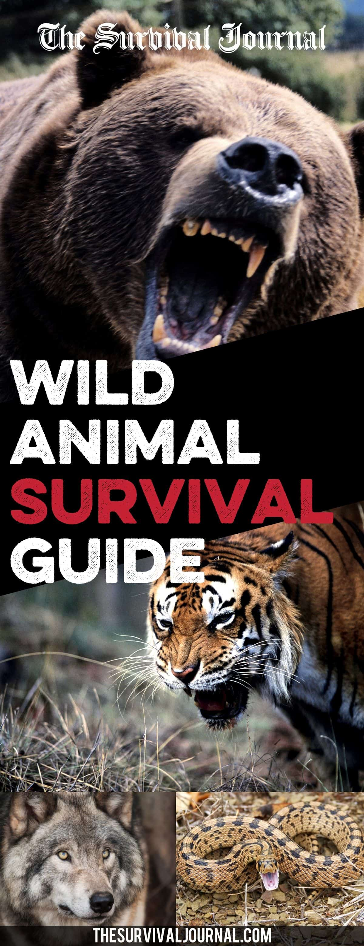 wild animal survival guide