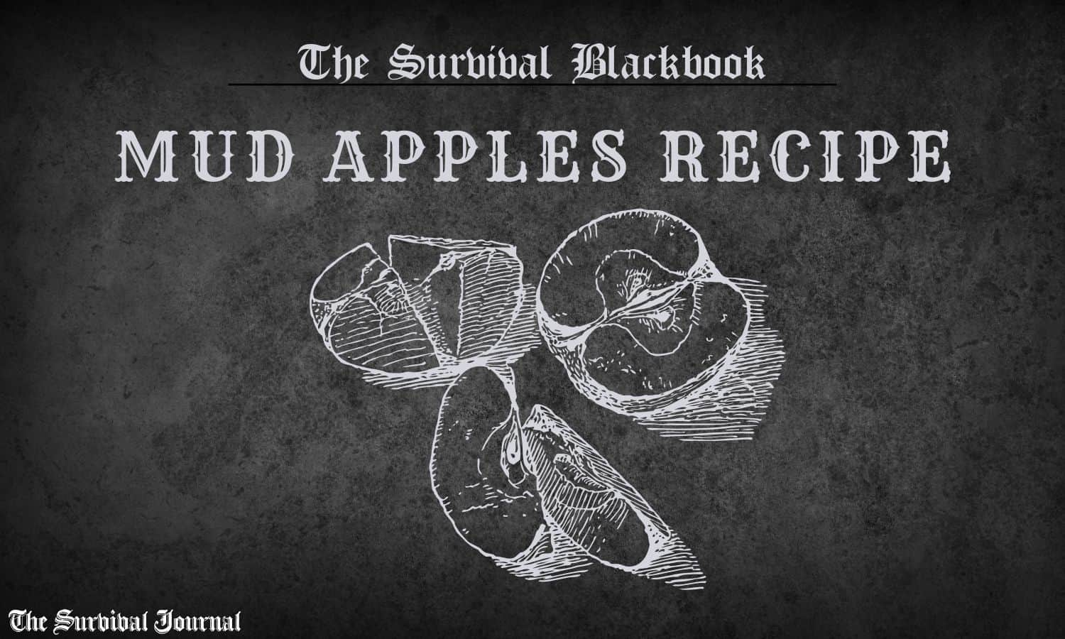 mud apples the survival blackbook