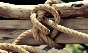 Timber Hitch Knot Guide: How To Tie and What It's Used For