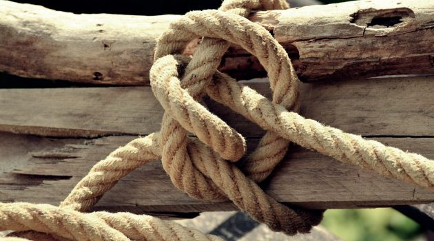 timber hitch knot