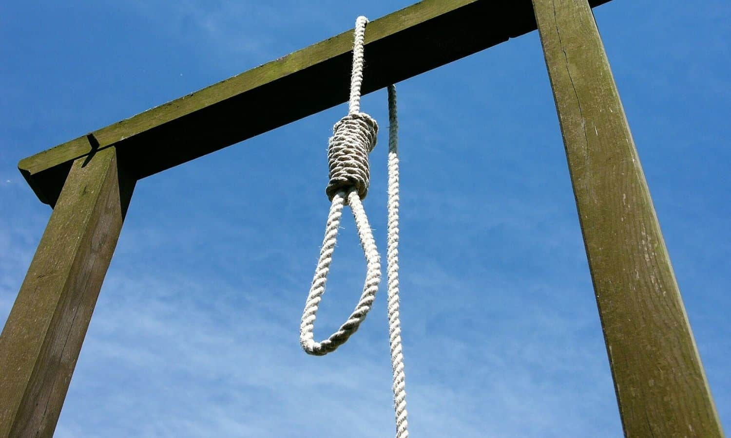 gallows noose knot