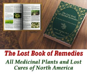 book of remedies 1